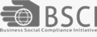 BSCI audit consulting